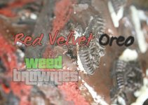 Red Velvet Oreo Weed Brownies